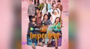 Imperfect The Series